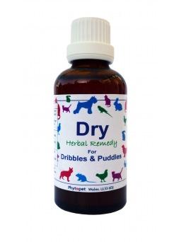 Dry - Incontinencia Urinaria